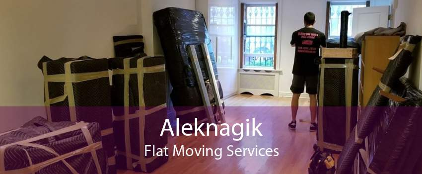 Aleknagik Flat Moving Services