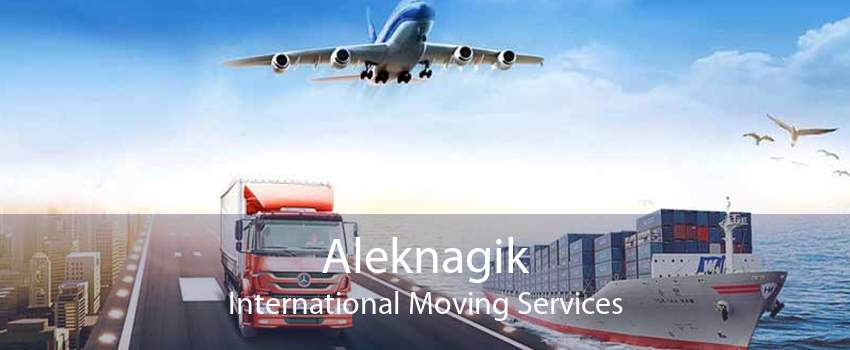 Aleknagik International Moving Services