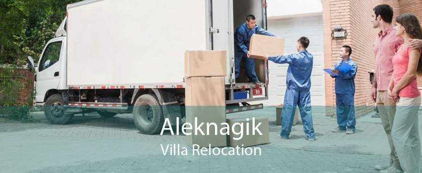 Aleknagik Villa Relocation
