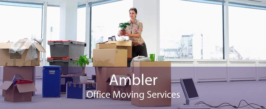 Ambler Office Moving Services
