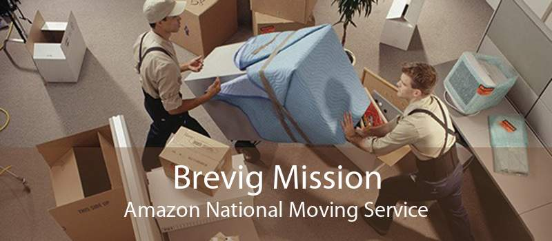 Brevig Mission Amazon National Moving Service