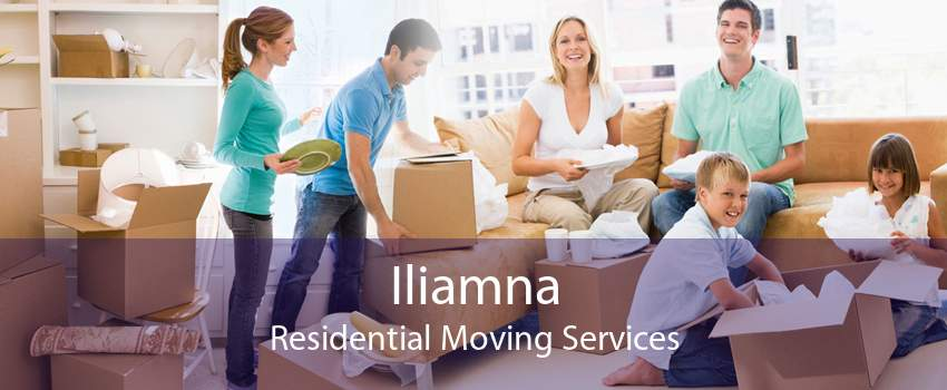 Iliamna Residential Moving Services