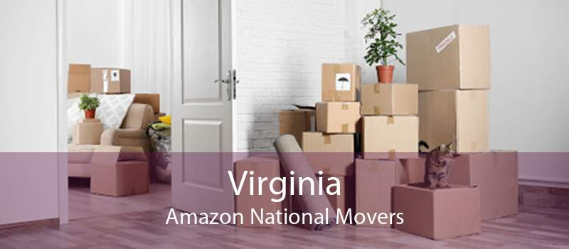Virginia Amazon National Movers